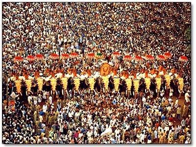 trissur-pooram-festival-kerala-elephants