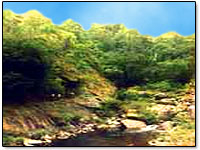 silent-valley