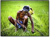 farmer-suicides